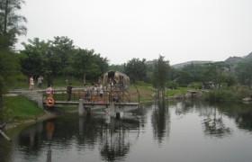Lingnan Water Town