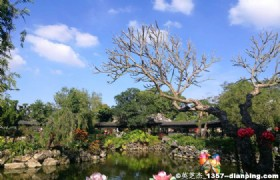 Zhongshan Zhan Garden 1