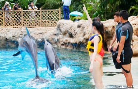 Chimelong Ocean Kingdom Theme Park