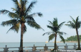 One Day Essence Zhuhai Muslim Tour from Macau
