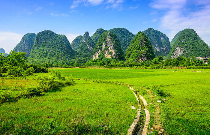 Yangdi Village