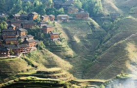 Longji Rice Terraced Field