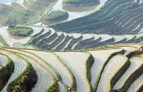 Guangzhou, Guilin, Longsheng and Yangshuo 6 Days Bullet Train Tour