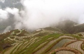 foggy mountain terraces