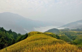 on the summit longsheng