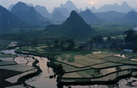 Yangshuo Rice Field