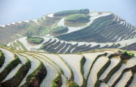 Longsheng Rice Terraced Field 02
