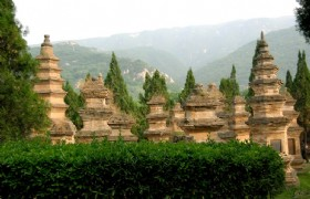 Forest of Stupas 2