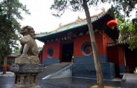 Shaolin Temple 2