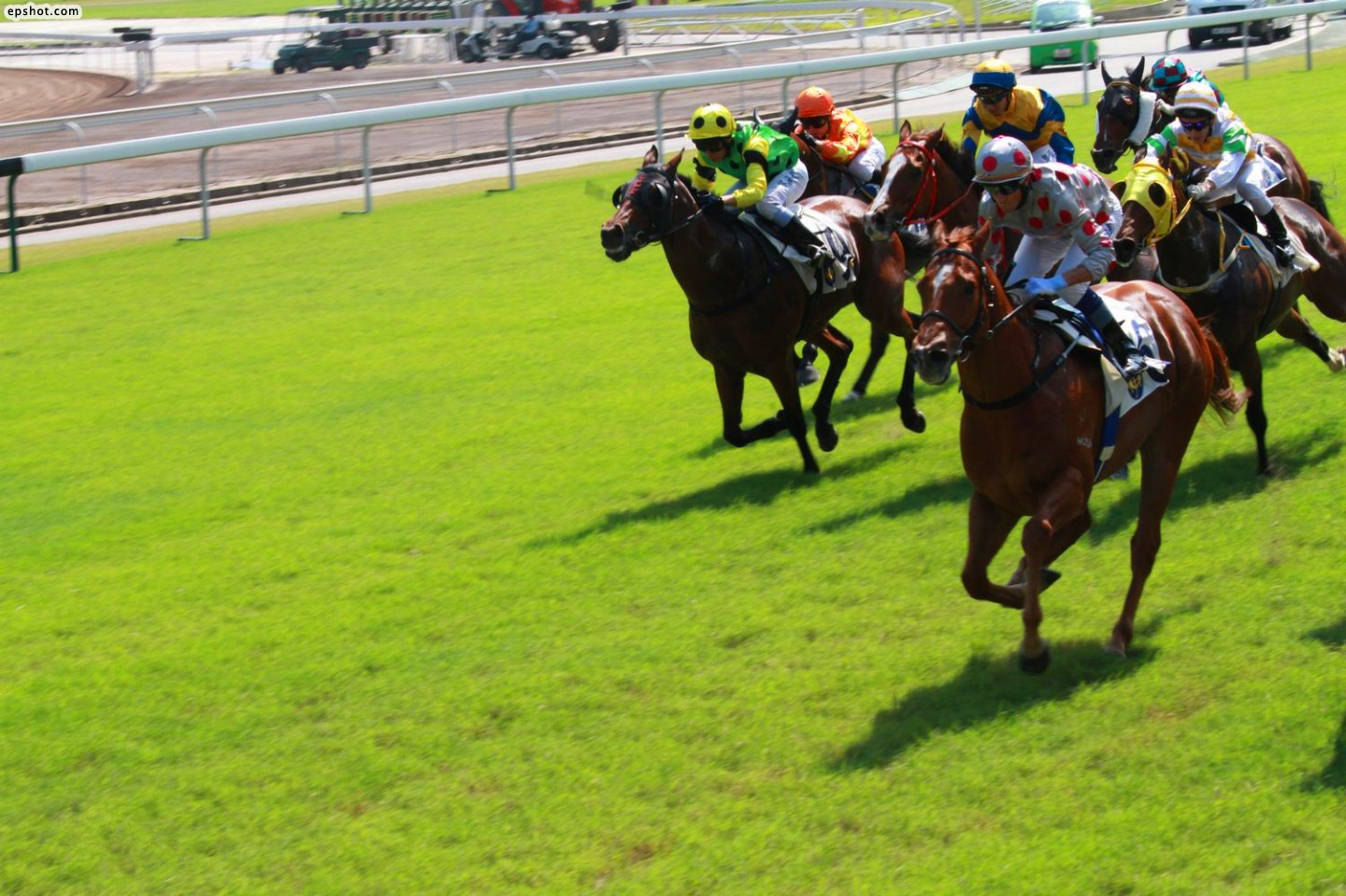 Hong Kong Come Horseracing Tour for normal days