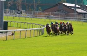 Hongkong Horseracing 02