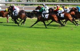 Hongkong Horseracing