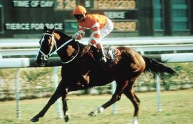 Horseracing winner Hong Kong