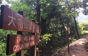 Tai Mo Shan Country Park