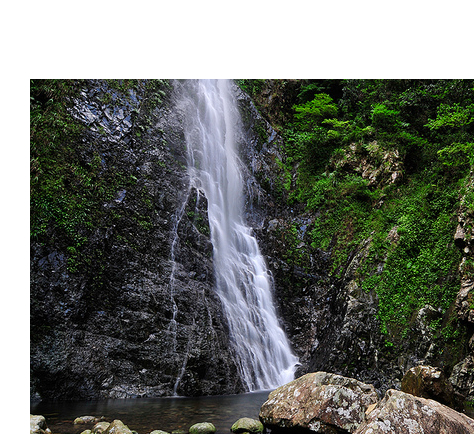 Taimo Mountain and Ng Tung Waterfalls 1 Day Hiking Tour