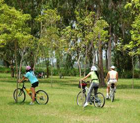 Hong Kong Ecological Diversity Biking Tour