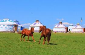 Xilingol 5 Days Mongolian Culture Tour