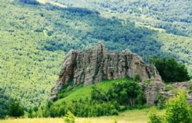 Asihatu Stone Forest 2