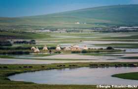 Hulunbuir Grasslands4