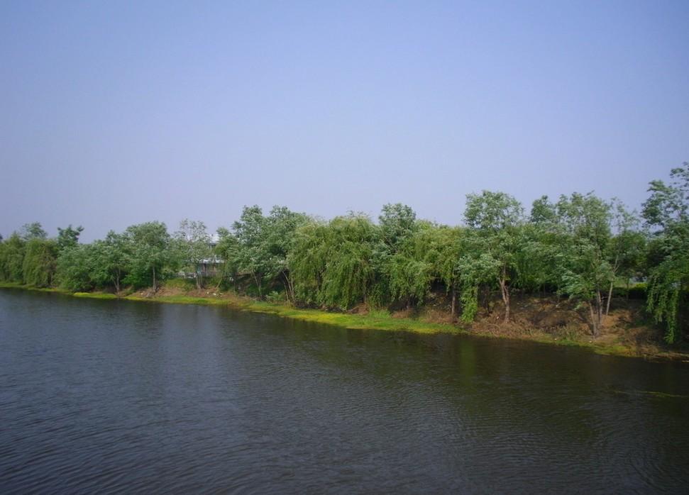 Hongze Lake