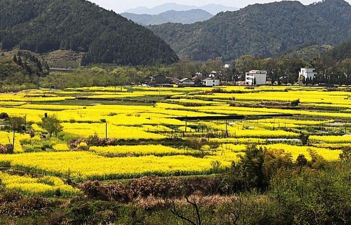 Wuyuan Village