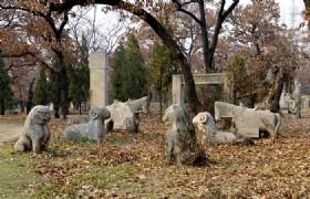 Cemetery Of Confucius 2