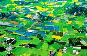 Chuanxi Plain