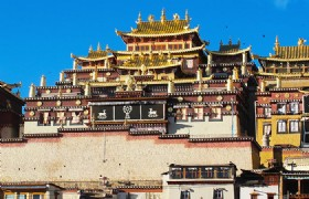 Lhasa Gyantse Shigatse Mt. Everest 8 Day Tour (Mini Group)