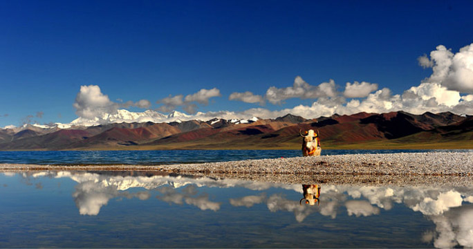 6-Day Lhasa and Namtso Heavenly Lake Tour (Mini Group)
