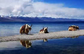 10 Days Yunnan and Tibet Hiking Tour