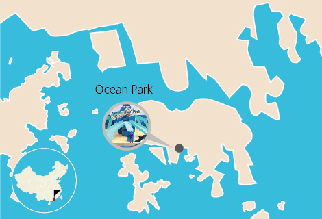 Hong Kong Ocean Park One Day Tour