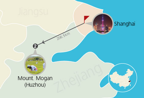 Shanghai Mogan Moutain 2 Days Trekking Tour