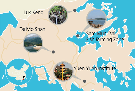 The Land Between Tour of the New Territories