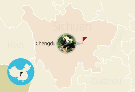 School Holiday to Chengdu 5 Days Agricultural Culture Experience Student Trip