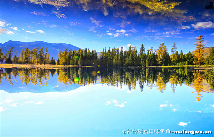 Private North Xinjiang 11 Days Tour (Heavenly Lake)
