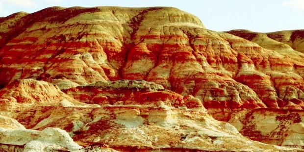 Multi-coloured Bay