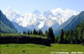 Narat Grassland3