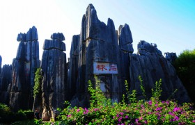 Stone Forest in Kunming City
