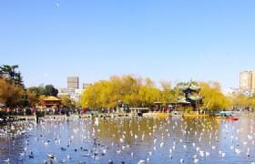 Kunming Cuihu Lake Park 1