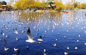 Kunming Cuihu Lake Park 3(1)