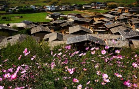 5 Days Group Tour to Dali, Lijiang & Shangri-La