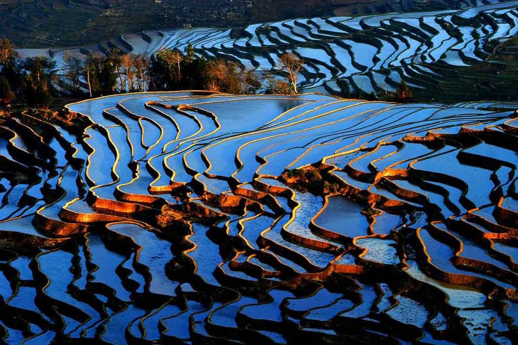 yuanyang china rice fields
