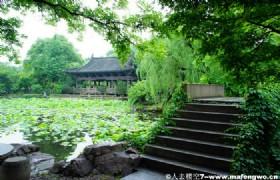 Shen Garden2