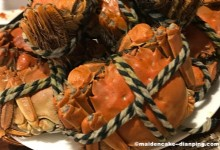 Autumn Delicacy -- Chinese Hairy Crab