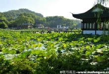 Divine Picturesque West Lake