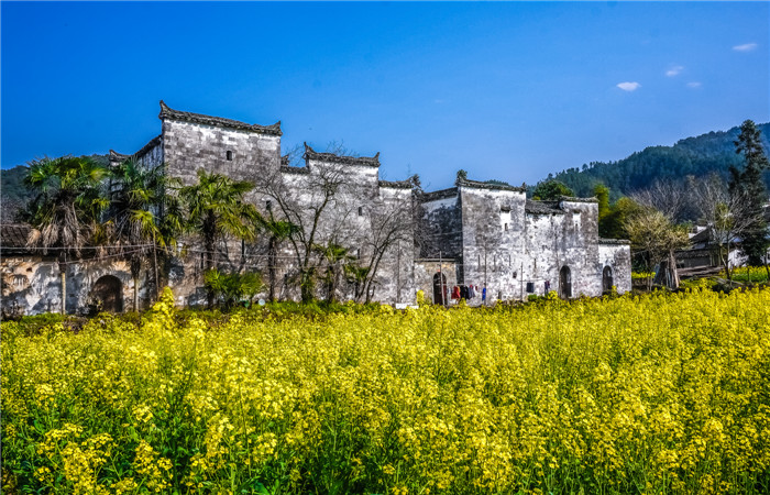 Explore Beautiful Ancient Villages in Wuyuan