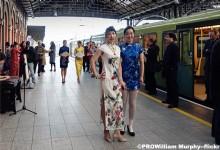 The dress Cheongsam