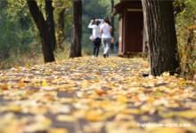 Glamorous Shentangyu Natural Scenic Spot