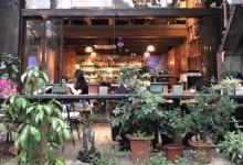 Shenzhen Café