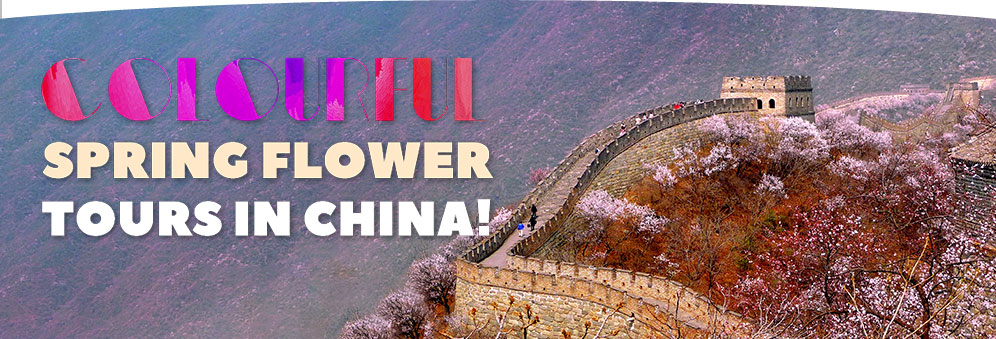 Colourful Spring Flower Tours in China for M2C